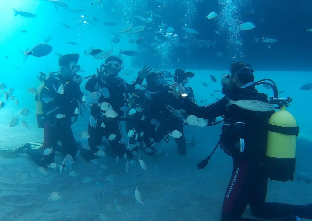 Abdullah Gül University, Student, Activity, Club, Sports, diving, International, travel