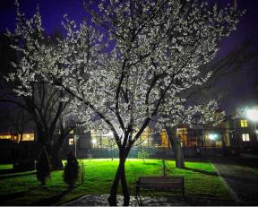 Abdullah Gül University, AGU, Kayser, Turkey, campus, facilities, architecture projects, reuse, renovation