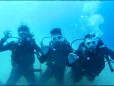 AGU, summer, on-campus, green campus, seaside, diving