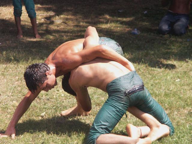 Turkey, traditional, sport, oil, wrestling